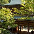 Photos: 永平寺3