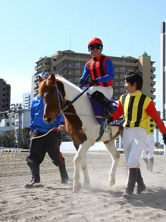 120219ポニーレースin川崎-本馬場入場-3番フラワーカンパニー号と吉原寛人騎手-01