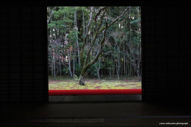 2011/12KYOTO0029