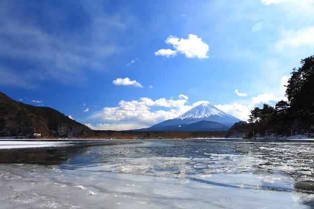 写真: 精進湖 冬景