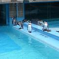 Photos: 20110827王子動物園?