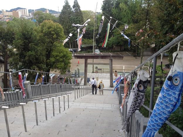 Photos: 犬山城_170