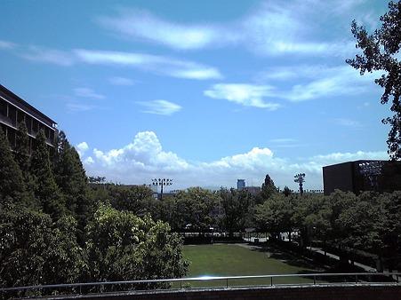 夏空です。