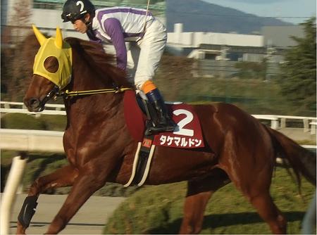 第40回園田ジュニアカップ2タケマルドン3