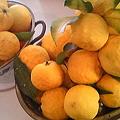 Photos: 柚子をたくさん頂きました♪