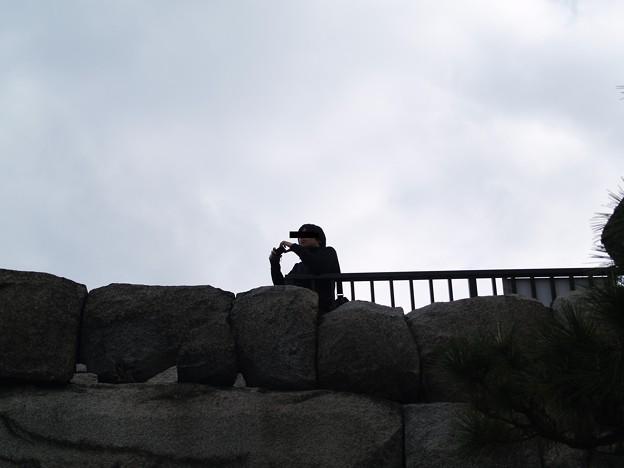 二条城 『写真とってもらっていいですか~?』を良く頼まれるkuro3