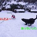 Photos: 03月01日2