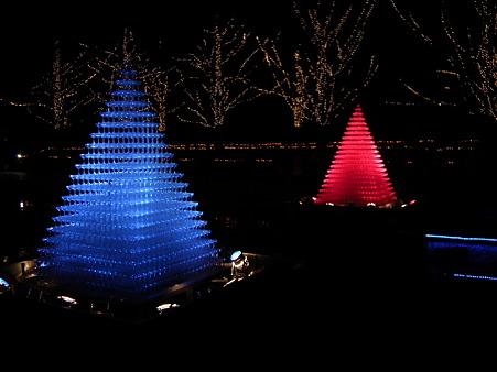 昭和記念公園 255