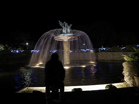 昭和記念公園 167