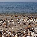 Photos: 常滑の海岸