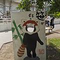 写真: mauyama110705002