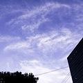 写真: 2011-08-15の空