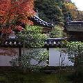 福寿院の紅葉