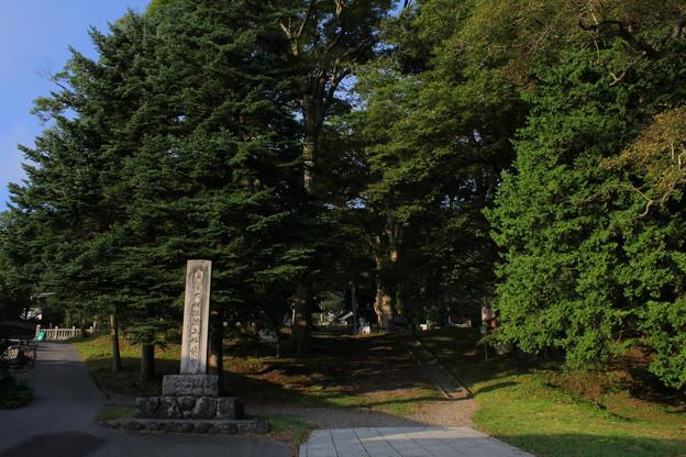 写真: 諏訪大社上社前宮