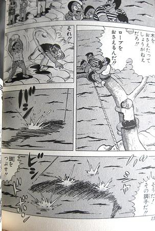 アケガラス (9)