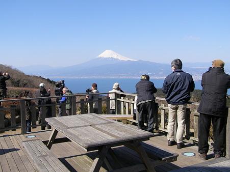達磨山からの駿河湾と富士