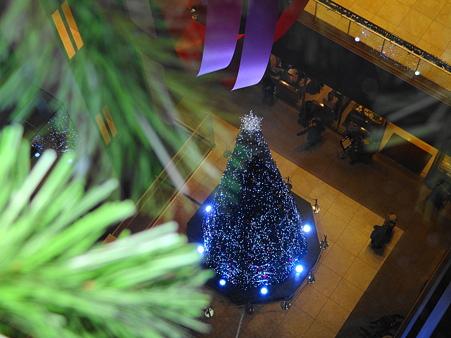 ミッドランドスクエアクリスマスツリー3