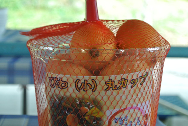 Photos: びわ丸カップ