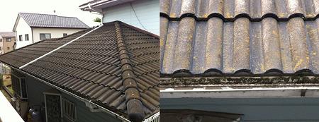 苔生した屋根