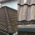 写真: 苔生した屋根