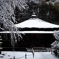 東慶寺本堂1-20120229