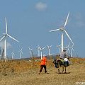 風車とロバ乗りおじさん