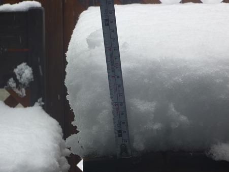 2012.02.29の雪