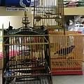 写真: 竹製小鳥カゴ。 タイからの...