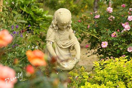 バラ園「薔薇の轍」・・7