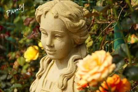 バラ園「薔薇の轍」・・10