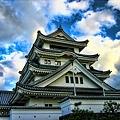 写真: 阿波(川島城)・・・。