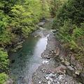 Photos: 110510-16男橋から下流側