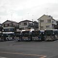 Photos: 港南営業所でバスがずらっと
