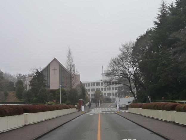 玉川大学7