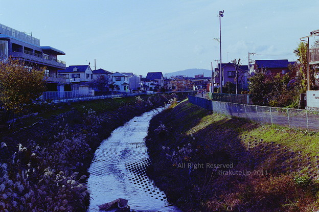 Photos: 川のある光景