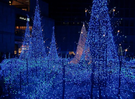 カレッタ汐留  Caretta illumination2011 Blue Forest-231218-1
