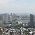 今日の東京5/17