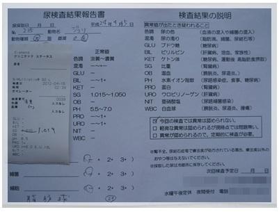 20120415 おちっこ検査 結果