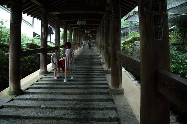 長谷寺 登廊 (3)