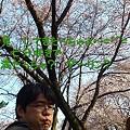 Photos: 七分咲きで ご不満な ダ~リン?