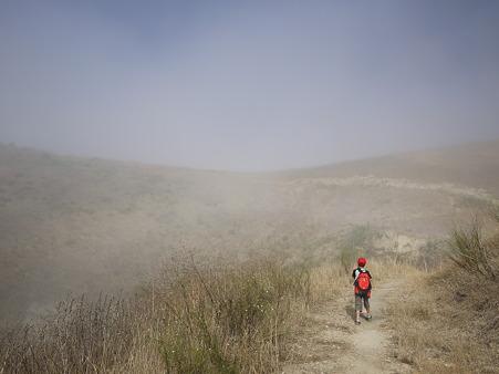 晴れる霧の中を歩く息子