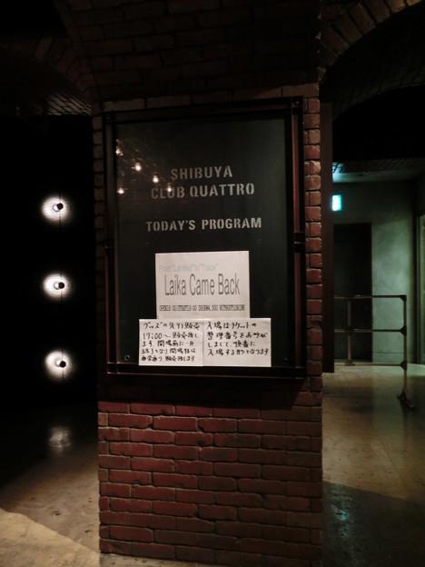 2011.12.15 渋谷CLUB QUATTRO 本日のmenu